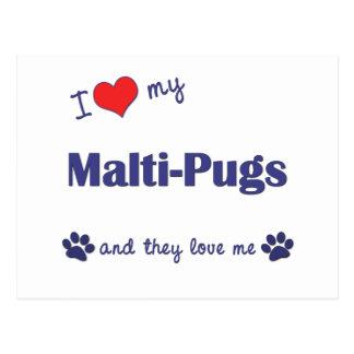I Love My Malti-Pugs (Multiple Dogs) Postcard
