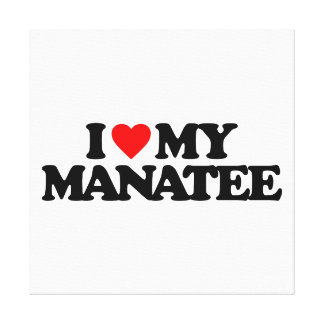 I LOVE MY MANATEE STRETCHED CANVAS PRINTS