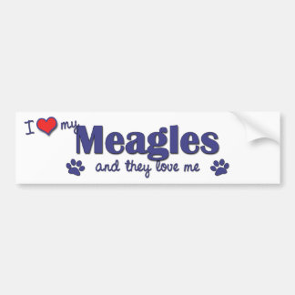 I Love My Meagles (Multiple Dogs) Bumper Sticker
