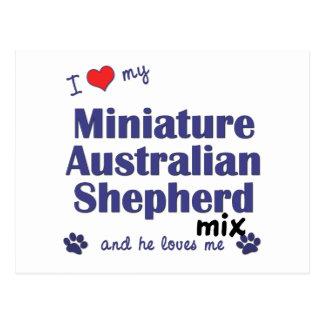 I Love My Mini Australian Shepherd Mix (Male Dog) Postcard