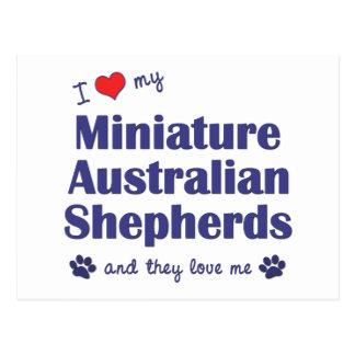 I Love My Mini Australian Shepherds (Multi Dogs) Postcard