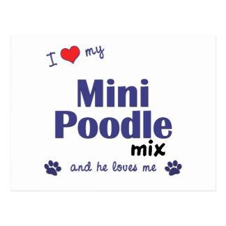 I Love My Mini Poodle Mix (Male Dog) Postcard