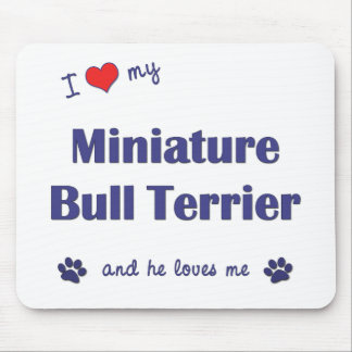 I Love My Miniature Bull Terrier (Male Dog) Mouse Pad
