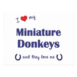 I Love My Miniature Donkeys (Multiple Donkeys) Postcard