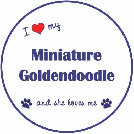 I Love My Miniature Goldendoodle (Female Dog) Cut Out