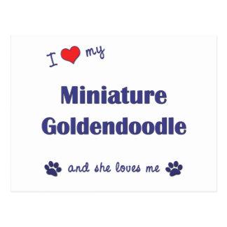 I Love My Miniature Goldendoodle (Female Dog) Postcard