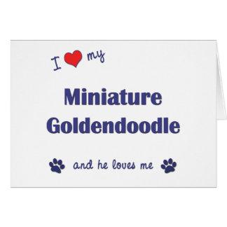 I Love My Miniature Goldendoodle (Male Dog) Card