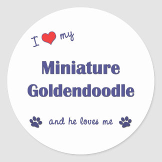 I Love My Miniature Goldendoodle (Male Dog) Classic Round Sticker