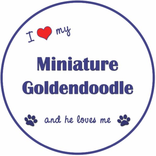 I Love My Miniature Goldendoodle (Male Dog) Photo Sculpture Ornament