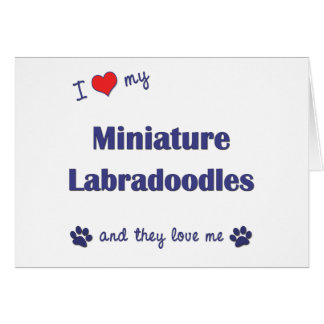 I Love My Miniature Labradoodles (Multiple Dogs) Card