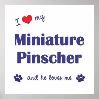 I Love My Miniature Pinscher (Male Dog) Print