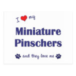 I Love My Miniature Pinschers (Multiple Dogs) Postcard
