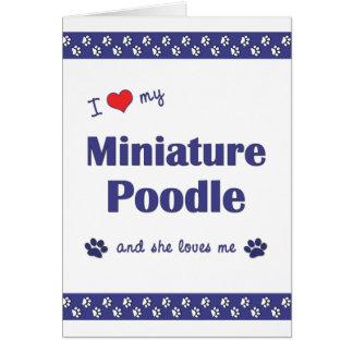 I Love My Miniature Poodle (Female Dog) Card