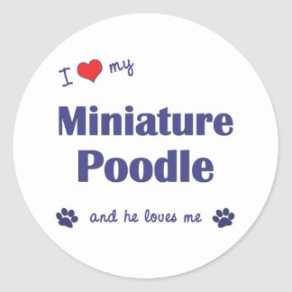 I Love My Miniature Poodle (Male Dog) Classic Round Sticker