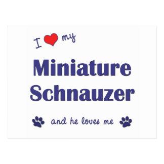 I Love My Miniature Schnauzer (Male Dog) Postcard