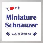 I Love My Miniature Schnauzer (Male Dog) Print