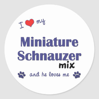 I Love My Miniature Schnauzer Mix (Male Dog) Classic Round Sticker