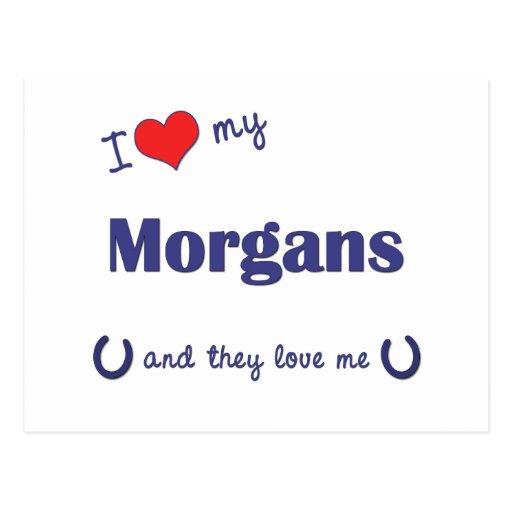 I Love My Morgans (Multiple Horses) Post Card
