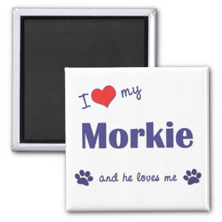 I Love My Morkie (Male Dog) 2 Inch Square Magnet