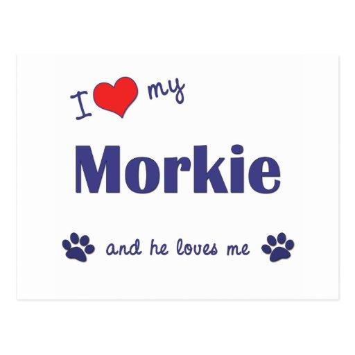 I Love My Morkie (Male Dog) Postcard