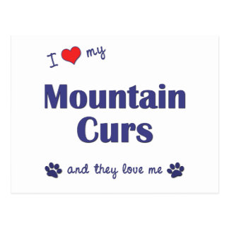 I Love My Mountain Curs (Multiple Dogs) Postcard