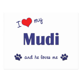 I Love My Mudi (Male Dog) Postcard