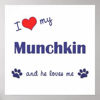 I Love My Munchkin (Male Cat) Posters