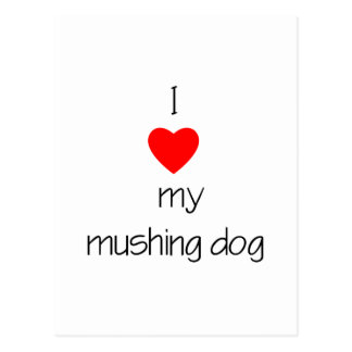 I Love My Mushing Dog Postcard