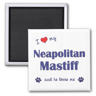 I Love My Neapolitan Mastiff (Male Dog) 2 Inch Square Magnet