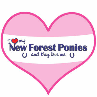 I Love My New Forest Ponies (Multiple Ponies) Statuette