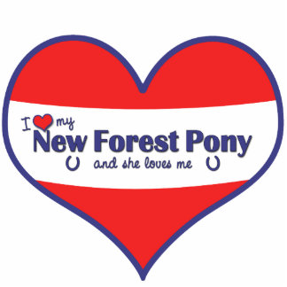 I Love My New Forest Pony (Female Pony) Statuette