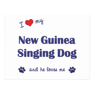 I Love My New Guinea Singing Dog (Male Dog) Postcard