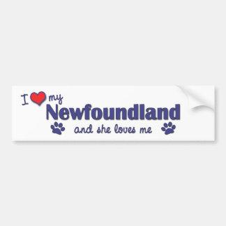I Love My Newfoundland (Female Dog) Bumper Stickers