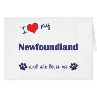 I Love My Newfoundland (Female Dog) Cards