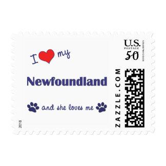I Love My Newfoundland (Female Dog) Postage