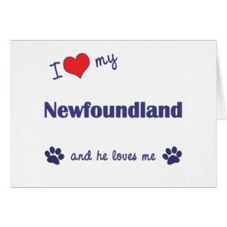 I Love My Newfoundland (Male Dog) Greeting Card