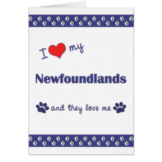 I Love My Newfoundlands (Multiple Dogs) Greeting Card