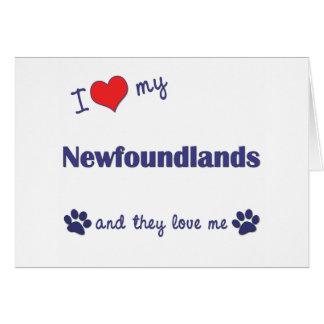 I Love My Newfoundlands (Multiple Dogs) Cards