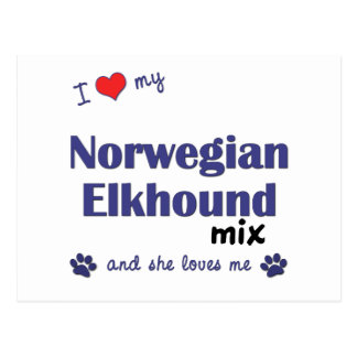 I Love My Norwegian Elkhound Mix (Female Dog) Postcard