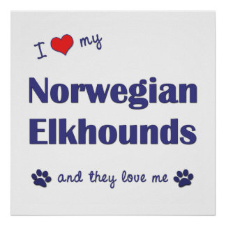 I Love My Norwegian Elkhounds (Multiple Dogs) Posters
