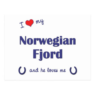 I Love My Norwegian Fjord Male Horse Postcards