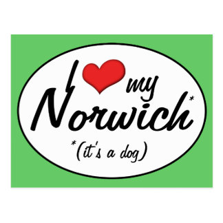 I Love My Norwich (It's a Dog) Postcard