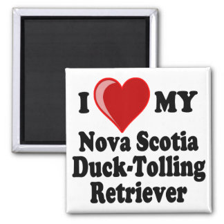I Love My Nova Scotia Duck-Tolling Retriever Magnet