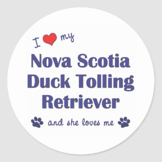 I Love My Nova Scotia Duck Tolling Retriever (She) Classic Round Sticker
