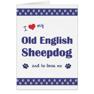 I Love My Old English Sheepdog (Male Dog) Stationery Note Card