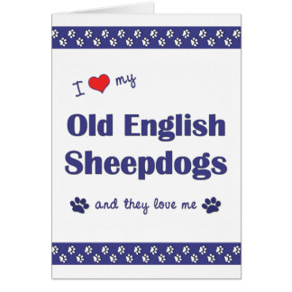 I Love My Old English Sheepdogs (Multiple Dogs) Card