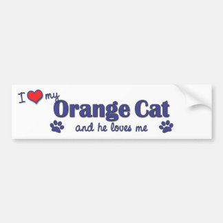 I Love My Orange Cat (Male Cat) Bumper Sticker