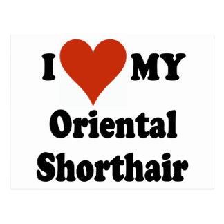 I Love My Oriental Shorthair Cat Merchandise Postcard