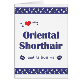 I Love My Oriental Shorthair (Male Cat) Stationery Note Card