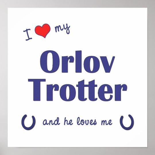 I Love My Orlov Trotter (Male Horse) Poster